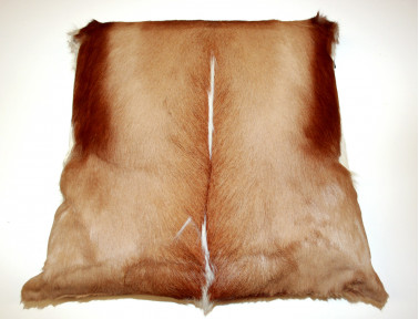 Coussin en peau de Springbok SIMPLE FACE