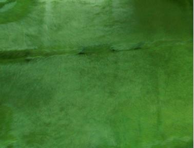 Peau de vache teintée Vert
