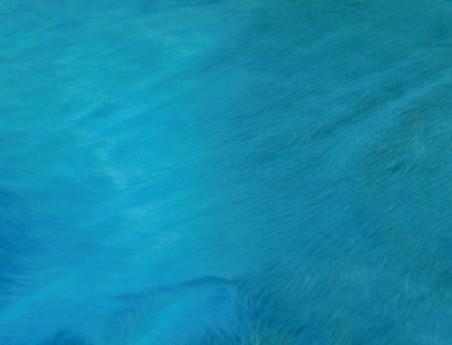 Peau de vache teintée Bleu turquoise