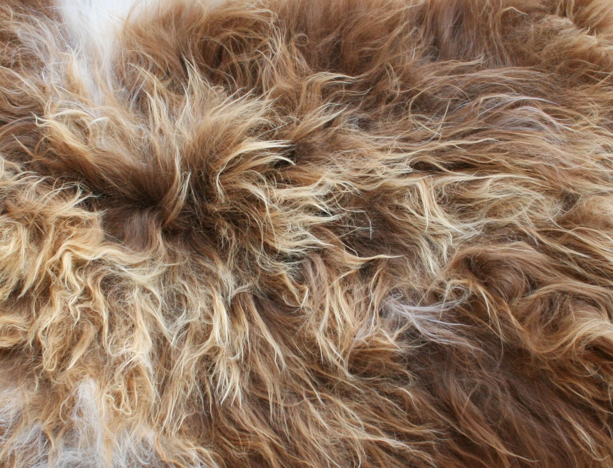 Mouton islandais marron m ch naturel - Nettoyer peau de mouton ...