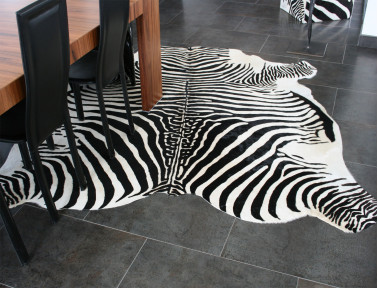 Zebra cowhide printed on white background