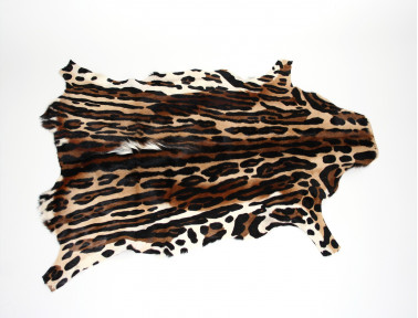 Peau de Springbok imprimée Léopard