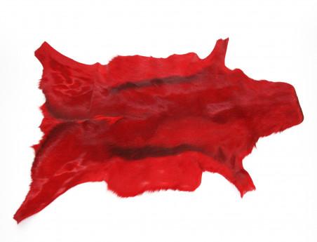 Peau de Springbok teintée